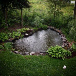 kerti tó kellékek